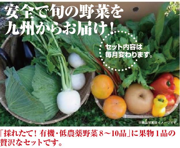 低農薬九州野菜セット