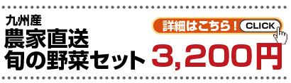 九州産農家直送旬の野菜セット